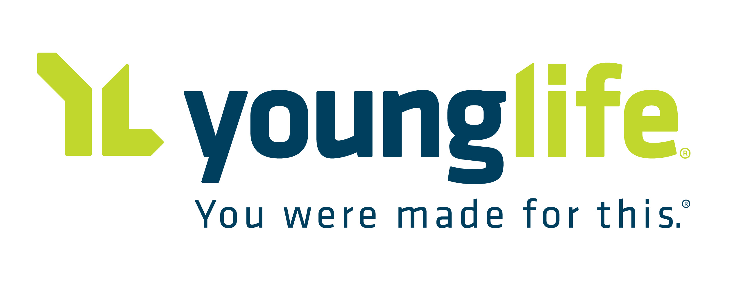 YL Horizontal Tag Color